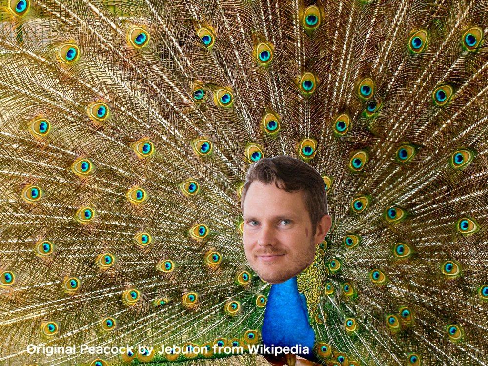 Peacock Torulf